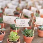 婚禮回禮篇(9) 喻意新人的感情繼續發芽生長—多肉植物小盆栽