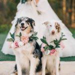 結婚資訊(64)  人生最重要嘅日子點可以少咗佢呢?