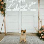 結婚資訊(71) 2019年婚禮最強佈置︱霓虹燈牌花體字